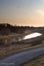 Sunrise river